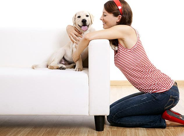 Keeping Your Puppy Safe – Pet Proofing at Home